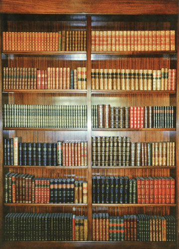 A bookcase of decorative leather books